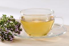 Thyme Herbal Tea Stock Photos