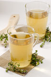 Thyme Herbal Tea Royalty Free Stock Photo