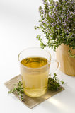 Thyme Herbal Tea Stock Photos