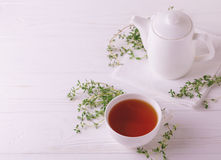 Thyme herbal tea. Healthy drink. Alternative medicine Stock Images