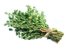 Thyme herbs Royalty Free Stock Photos