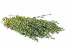 Thyme isolated Stock Photos