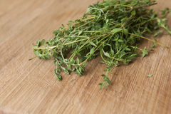 Thyme Leaves Royalty Free Stock Photography
