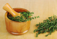 Thyme and Mortar Royalty Free Stock Image