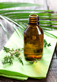 Thyme oil Stock Photo