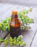 Thyme oil Royalty Free Stock Photos
