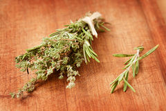 Thyme and rosemary Royalty Free Stock Image