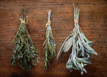 Thyme, Rosemary and Sage Culinary Herbs Royalty Free Stock Image