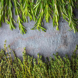 Thyme  and rosemary sprigs on the stone table square. Thyme and rosemary sprigs on the dark stone table square Stock Photography