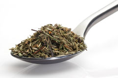 Thyme in a spoon Stock Photos