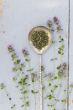 Thyme sprigs Royalty Free Stock Photo