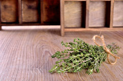 Thyme sprigs Royalty Free Stock Images
