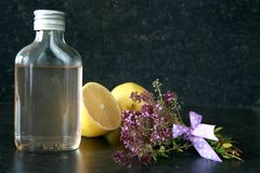 Thyme syrup Stock Image