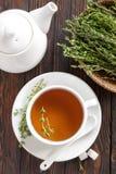 Thyme tea Stock Image