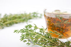 Thyme tea with fresh herb in teacup, white background Royalty Free Stock Image