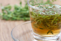 Thyme tea with fresh thyme leaves inside teacup Stock Photography