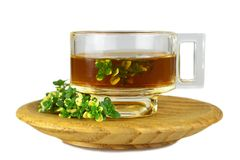 Thyme tea isolated on white. Background royalty free stock image