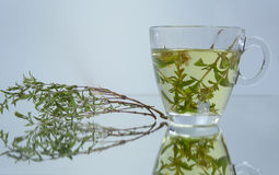 Thyme tea natural Royalty Free Stock Photography