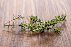 Thyme (Thymus vulgaris). Green branches of thyme (Thymus vulgaris) on a brown wooden board royalty free stock photo