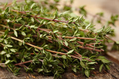 Thyme twigs Royalty Free Stock Photography