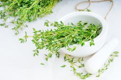 Thyme twigs in the pounder on white wooden table Royalty Free Stock Image