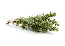 Thyme twigs tied with twine Stock Image