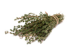 Thyme on a white background Royalty Free Stock Photography