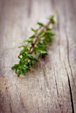 Thyme on a wooden rustic table stock image