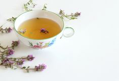 Thymus pulegioides tea and leaves. Tea is effective during diseases of the upper respiratory tract.Medicinal herb .The. Thymus pulegioides tea and leaves. Tea is stock image