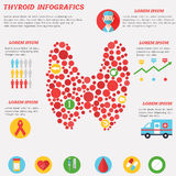 Thyroid infographics with elements in flat style. Banner Thyroid infographics with elements in flat style Royalty Free Stock Images