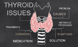 Thyroid Issues on Blackboard Stock Photos