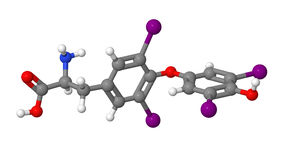 Thyroxine - molecular model Royalty Free Stock Image