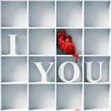 Ti amo Immagini Stock