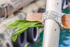 Ti Leaves For Protection. Ti leaves lashed to the stern of a sailing vessel for protection, a Hawaiian and Polynesian tradition Royalty Free Stock Image