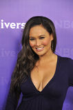 Tia Carrera Royalty Free Stock Image