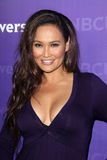 Tia Carrere Royalty Free Stock Image