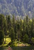 Tiaga See und Wald Lizenzfreie Stockfotos