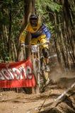 Tiago Mano Royalty Free Stock Photo