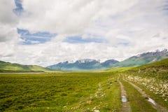 Tian-Shan Mountains gör grön vägen från Kara-Say till Naryn, Kirgizistan Arkivbilder
