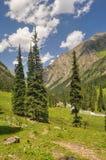 Tian-Shan nel Kirghizistan Fotografie Stock