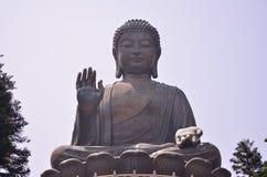 Tian solbrända Buddha Royaltyfri Foto