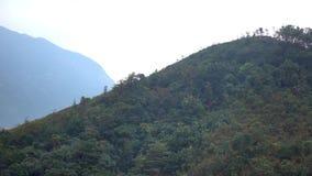 Tian Tan Buddha no sibilo Hong Kong de Ngong vídeos de arquivo