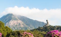 Tian Tan Buddha stora buddha - placerade det mest högväxta utomhus- för världs` s Arkivfoton