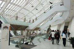 Tianjin natury dziejowy muzeum Obraz Stock