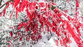 Tianmen berg, Zhangjiajie, Hunan, Kina, vintersnö och smog, filialer, röda band arkivbilder
