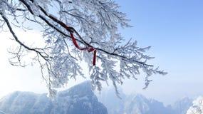 Tianmen góra, Zhangjiajie, Hunan, Chiny, zima śnieg, smog, gałąź, czerwoni faborki, fotografia stock