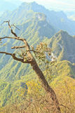Tianmen Mountain Royalty Free Stock Photography