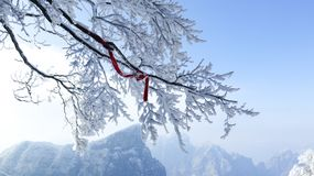 Tianmen Mountain, Zhangjiajie, Hunan, China, winter snow, smog, branches, red ribbons, stock photography