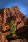 Tianshan grand canyon national geological park Stock Images