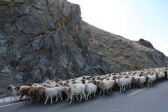 Tianshan Highway Stock Photos